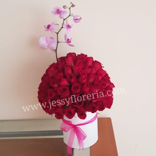Esfera de 50 rosas y orquídea florerias en guadalajara con servicio a domicilio, zapopan, tlaquepaque, tonala, tlajomulco