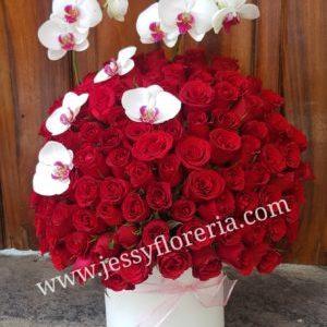 Esfera de rosas y orquìdeas Guadalajara Zapopan Tonalá Tlajomulco Corazones Caja Osos Cofres Aflorerias en guadalajara con servicio a domicilio, zapopan, tlaquepaque, tonala, tlajomulco