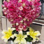 corazon de 100 rosas rositas