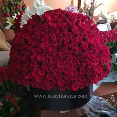 caja de rosas florerías en guadalajara con servicio a domicilio, zapopan, tlaquepaque, tonala, tlajomulco