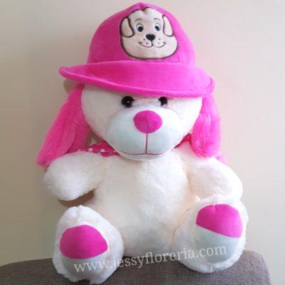 Perro con sombrero peluche