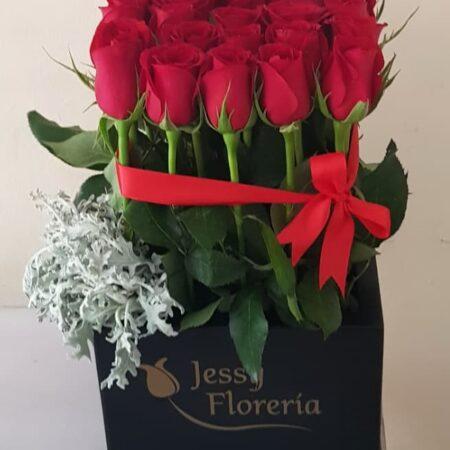 Caja 25 rosas