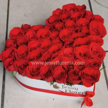 124-Corazón 50 rosas rojas