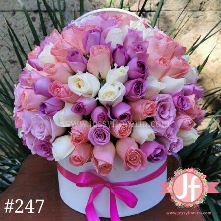247 Caja circular 100 rosas rositas