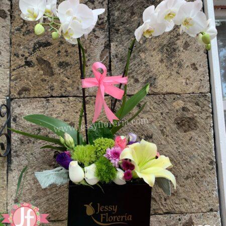 371-Caja negra con orquídea