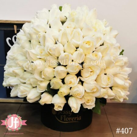 407 Caja circular 100 rosas Blancas