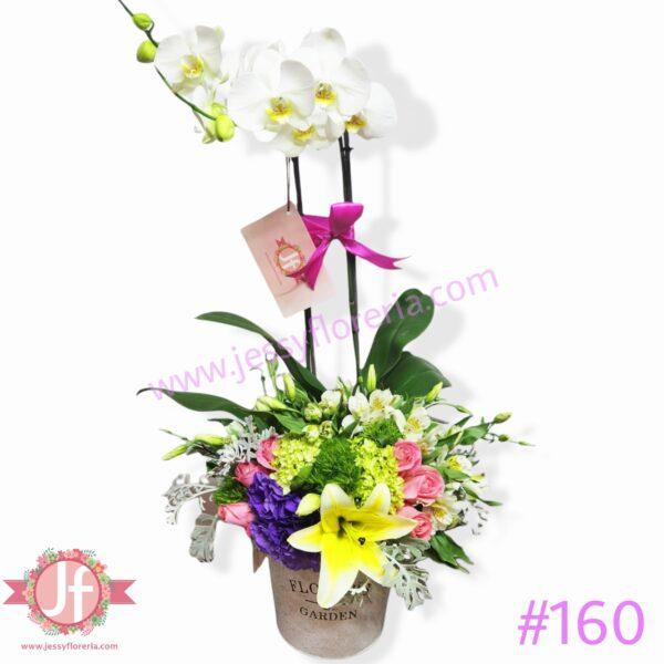 160 Diseño con planta de orquídea